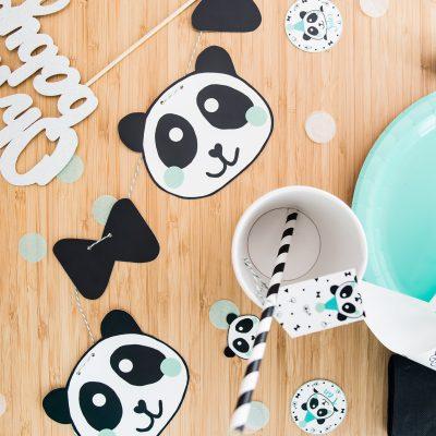 BOX déco Panda Mint